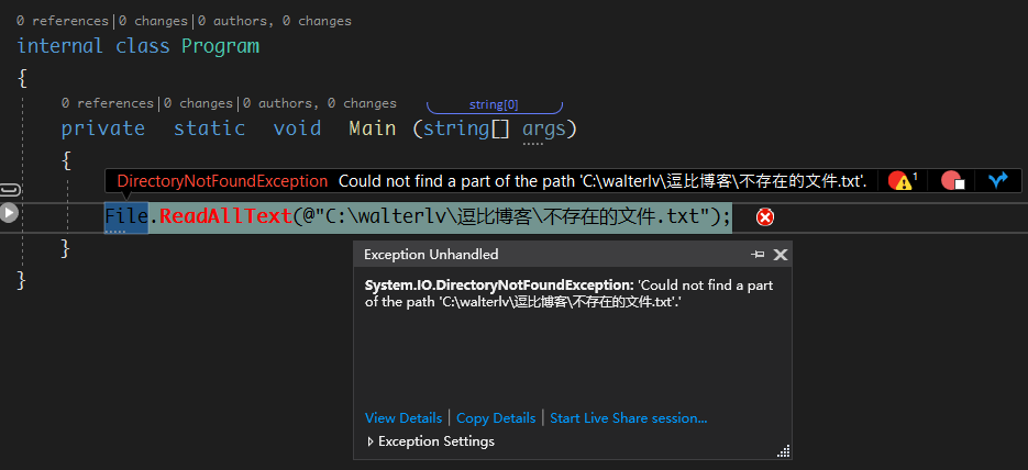 Visual Studio 异常中断